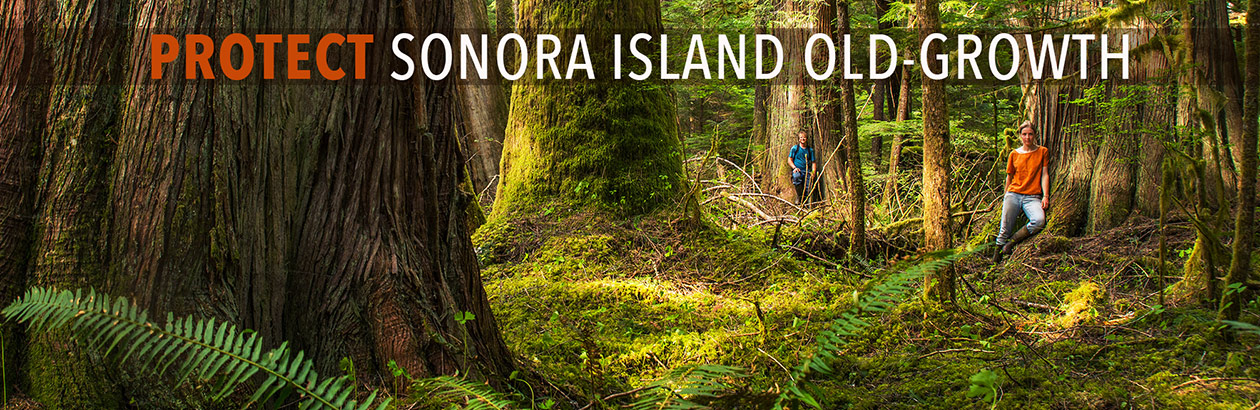 Sonora Island Old-Growth